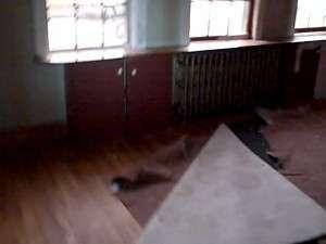 Dedham, MA livingroom Before rehab